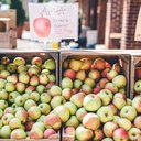 ThreeSpringsFruitFarm-PhillyVoice (1 of 21).jpg