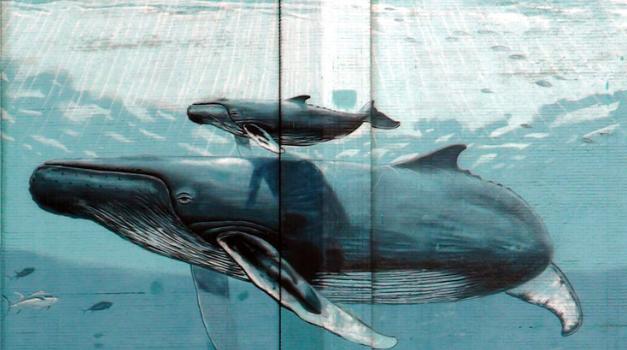 031217_WhalingWall