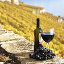 02262015_Wine