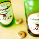 040916_Yuenglinglager