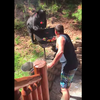 BEAR WATCH BBQ BABY