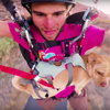 Cliff Diving Dog Paco Adrenaline Addiction Chase Reinford