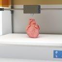 3-D Printed Organs