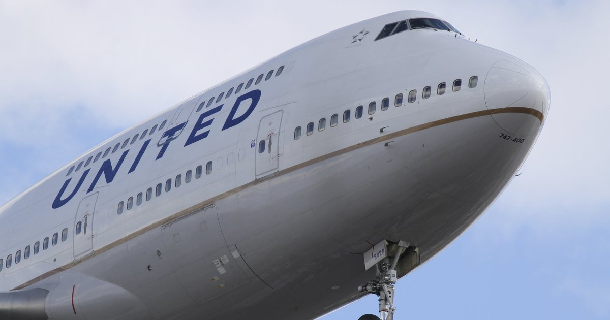 International Travel With Pets United Airlines