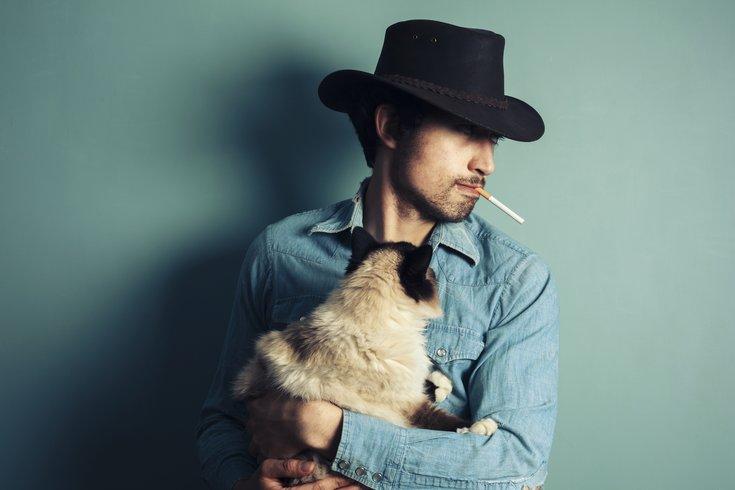 cowboy cat