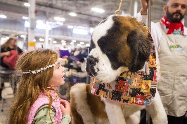 National Dog Show Kennel Club