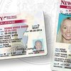 New Jersey driver's licenses
