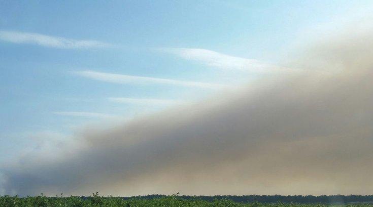 Wharton State Forest smoke