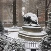 Rittenhouse Square Snow