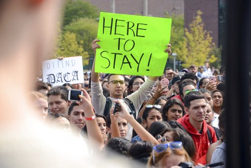 Immigration Colleges