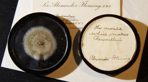 Britain Penicillin Mold