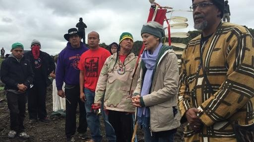 Oil Pipeline Protests Jill Stein