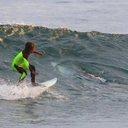 APTOPIX Australia Photo Bombing Shark