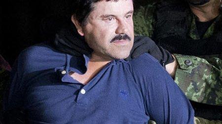 Books-El Chapo