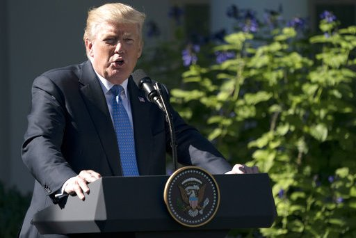 Trump The Fallen