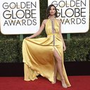 The 74th Annual Golden Globe Awards - Arrivals