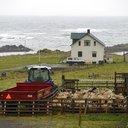 Iceland Murder Retrial