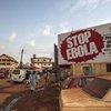 West Africa Ebola Fraud