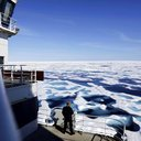 New Arctic Life Aboard Photo Gallery