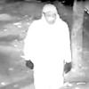 Trump Graffiti Suspect