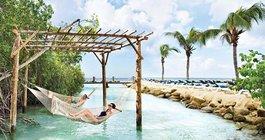 Limited - Aruba