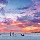 Limited - Clearwater Beach Florida