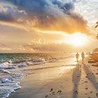 Limited - Punta Cana