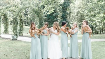 Wedding Puppies