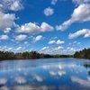 Wharton State Park - Ellen